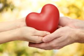 Cardiovascular Médico Palamós